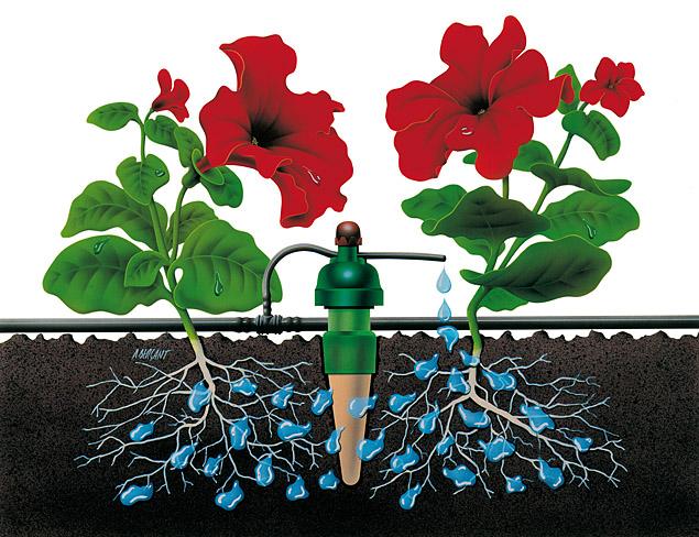Automatisches Bewässerungssystem für Ihren Garten