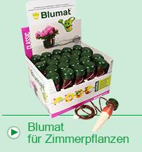 Bewässerungssystem für Ihre Zimmerpflanzen